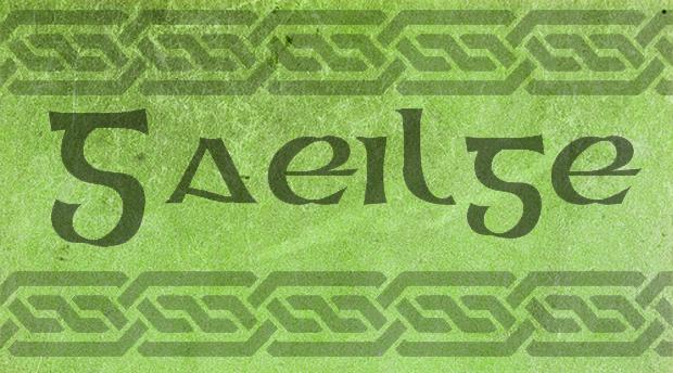 Irish Language ~ Get Into It!
